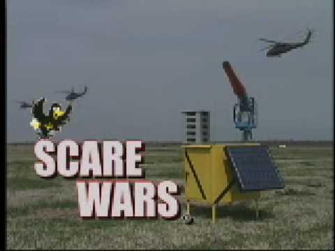 Bird Strike Deterrence System: Propane Cannon