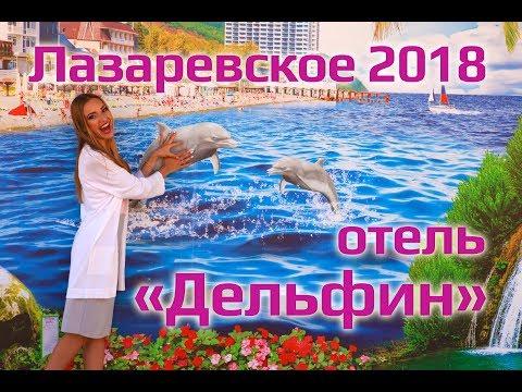 ОТЕЛИ НА ЮГЕ   Отель Дельфин Лазаревское 2018, отдых в Лазаревском, отель в Сочи, отдых в Сочи