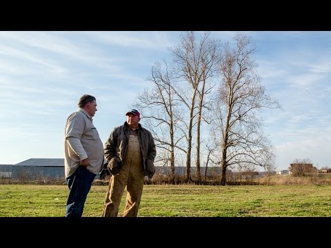 American Made: Is Tyson Chicken Produced in the USA? [Extended] streaming vf
