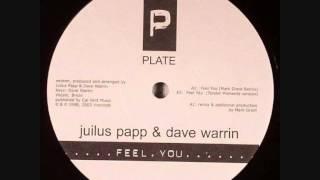 Julius Papp & Dave Warrin - Feel You (Mark Grant Remix)