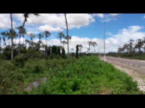Cheia do rio Acaraú em cruz CE em Lagoa salgada...
