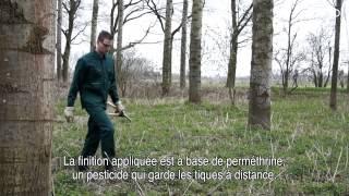HaVeP® InsectProtect, les vêtements insectifuges en bref | version Francais