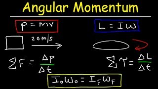 Angular Momentum - Basic Introduction, Torque, Inertia, Conservation of Angular Momentum
