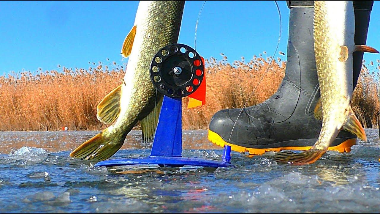 БОЛОТО, ГДЕ МНОГО ЩУКИ. ГОД СПУСТЯ. Жерлицы, зимняя рыбалка на щуку. Первый лёд 2019 - 2020