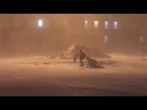 """Норильск, """"Черная пурга"""". 30 января 2017 г. Сильный ветер сбивает с ног и тащит людей по дороге!"""