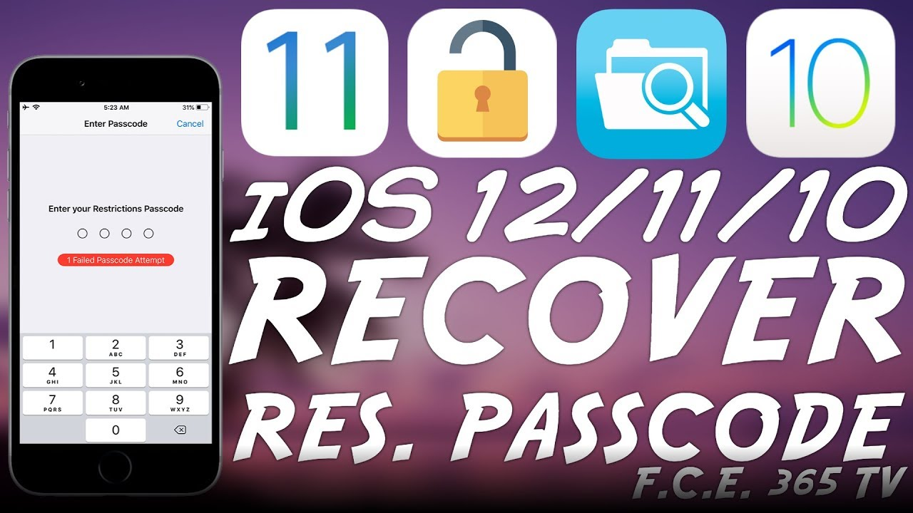 iOS 12 / iOS 11 / iOS 10 How to Recover The RESTRICTIONS PASSCODE
