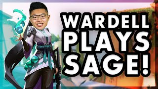 TSM WARDELL PLAYS SĄGE IN VALORANT!