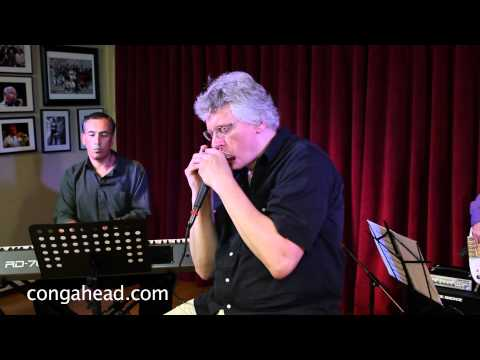Hendrik Meurkens Quartet performs Sambatropolis