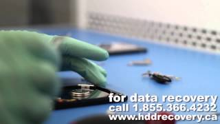data recovery on clicking Western Digital hard drive