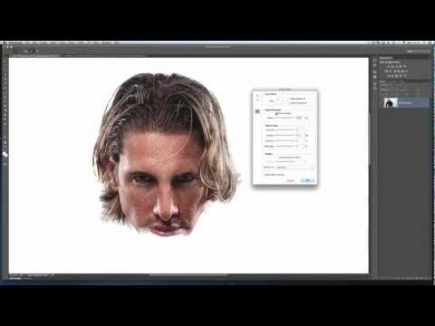 Photoshop Technique for Cutting Out / Selecting Fine Hair using Photoshop Refine Edge