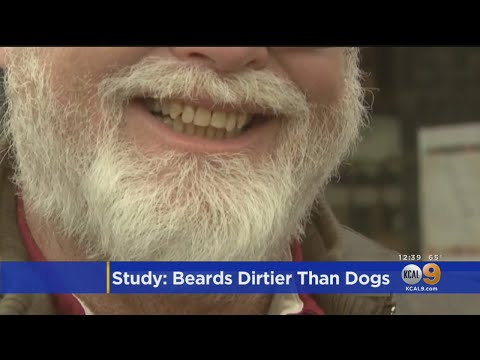 Craig Stevens - Men carry more germs in their beards than dogs carry in their fur