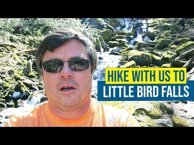Little Bird Falls NC