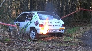 Rally Comarca da Ulloa 2018 Crashes & Mistakes