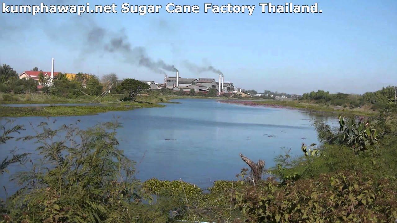 Kumphawapi Thailand  City new picture : Sugar from field to factory, Kumphawapi, Thailand YouTube