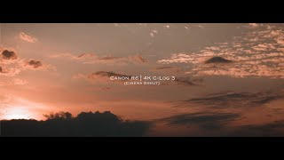 Canon R6 4K C-Log 3 (Cinema Ga…