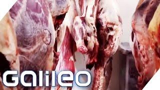Steak per Mausklick! Fleisch online kaufen | Galileo | ProSieben