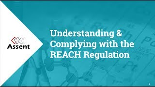 [Webinar] Understanding and Complying with the REACH Regulation