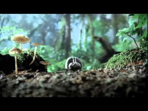 Teaser_ Volkswagen Black Beetle Commercial