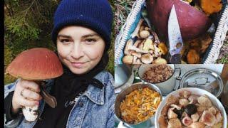 КОРЗИНА ПОЛНАЯ ГРИБОВ, лес красив. Засол АССОРТИ ИЗ 11 ВИДОВ грибов. Рецепт моей бабушки.