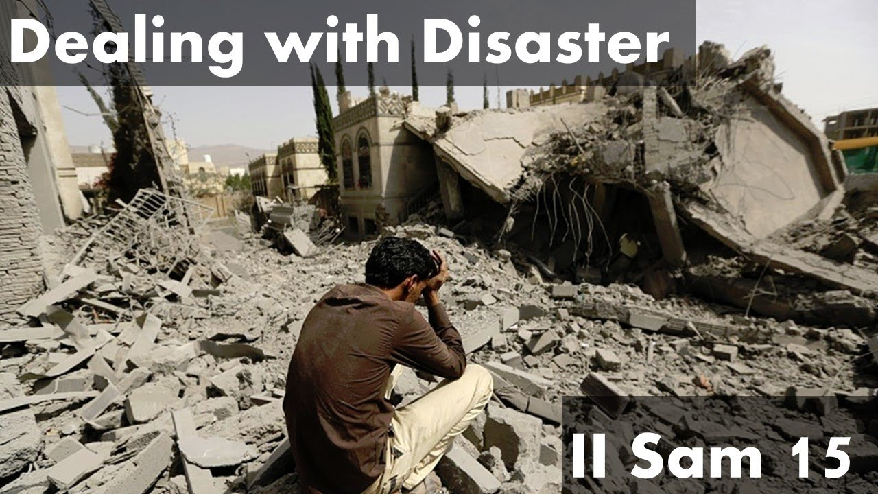 Download Dealing With Disaster