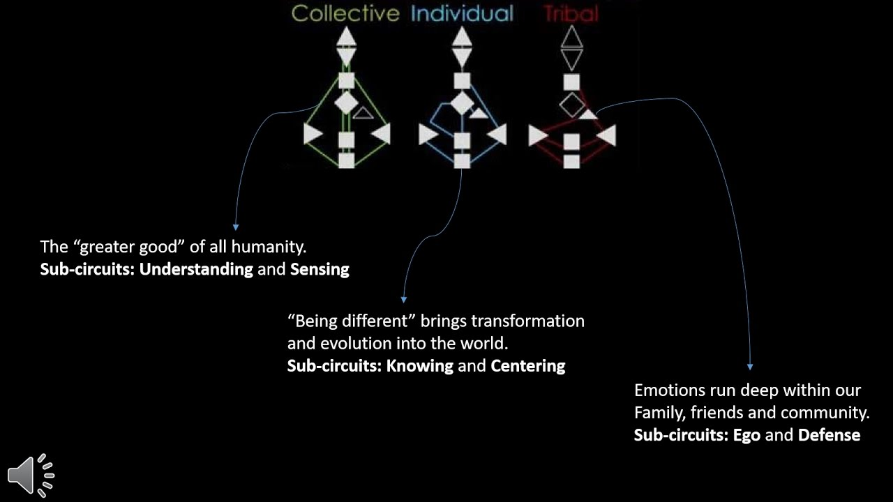 The Three Circuitry Groups in Human Design - YouTube