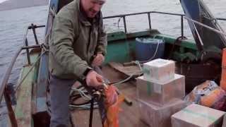 Рыбалка и отдых на Кольском, Barents Sea, Tipanovka