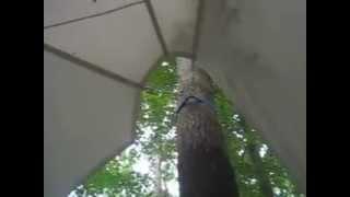 Теневые навесы в Москве: Тентовые конструкции