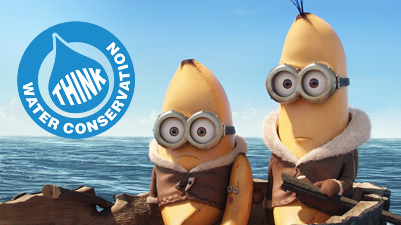 Minions Pitch Save Bananas Converse Water Youtube