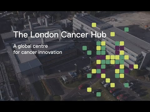 The London Cancer Hub: a global centre for cancer innovation