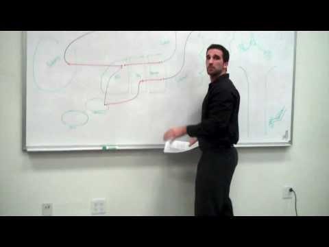 Basal Ganglia part 1: Anatomy and Function - Ben Glasman