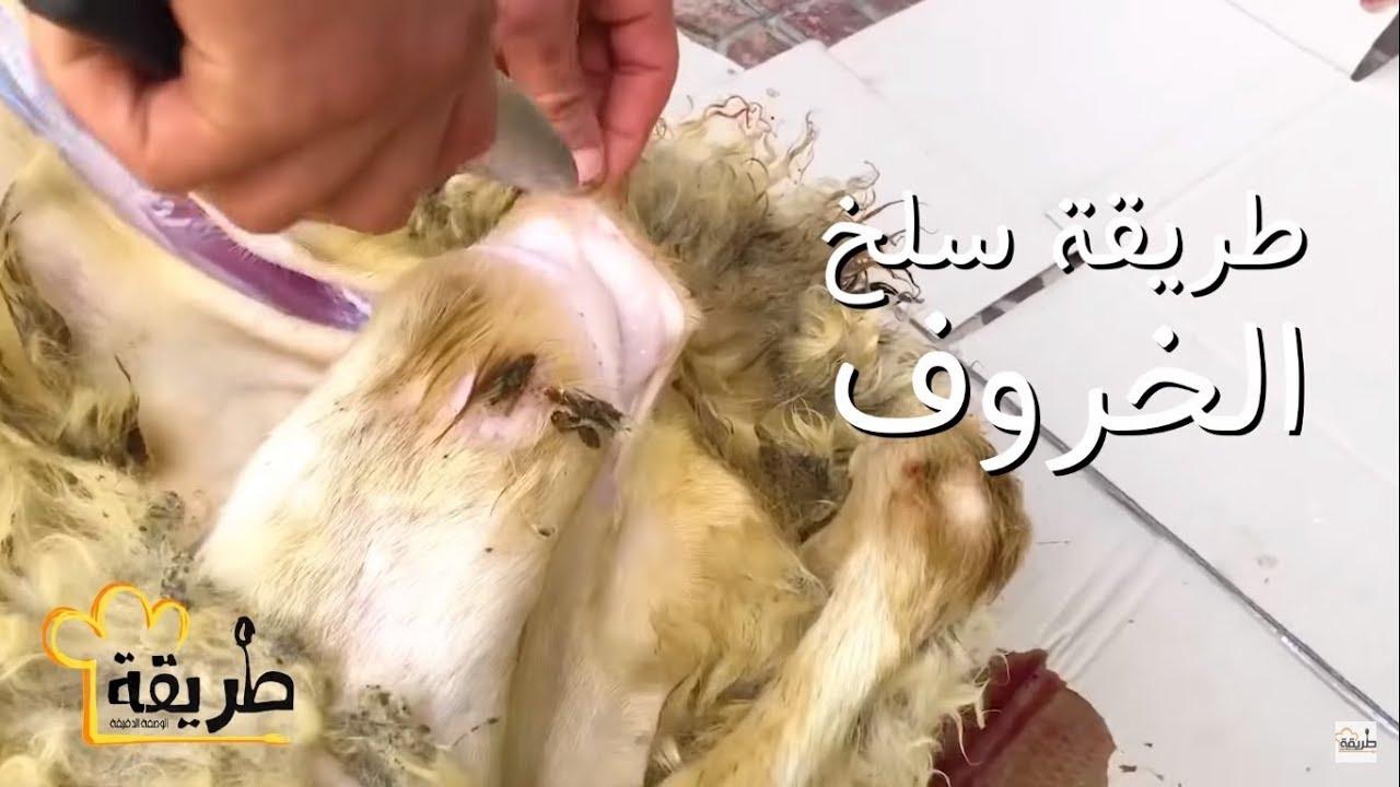 طريقة سلخ الخروف السوري وتقطيعه خطوة بخطوة Youtube