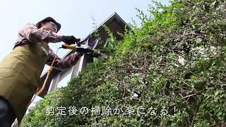 生垣の天面剪定に便利! ('16年5月23日投稿)