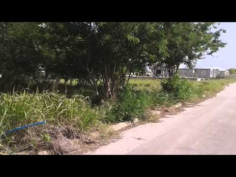 Land for Sale - Apple Hall, Bottom Bay, St. Philip, Barbados