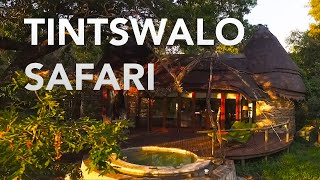 Tintswalo Safari Lodge - Kruger Park - South Africa