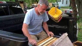DIY Pole & Bucket Swarm Capture 25' high