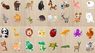 Развивающие мультики для самых маленьких Изучаем животных Мультфильмы Пазлы Все серии(, 2015-07-06T15:11:43.000Z)