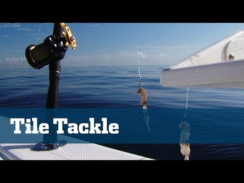 Florida Sport Fishing TV - Rigging Station Tilefish Deep Drop Tackle Rods Reels Line Rigs Offshore
