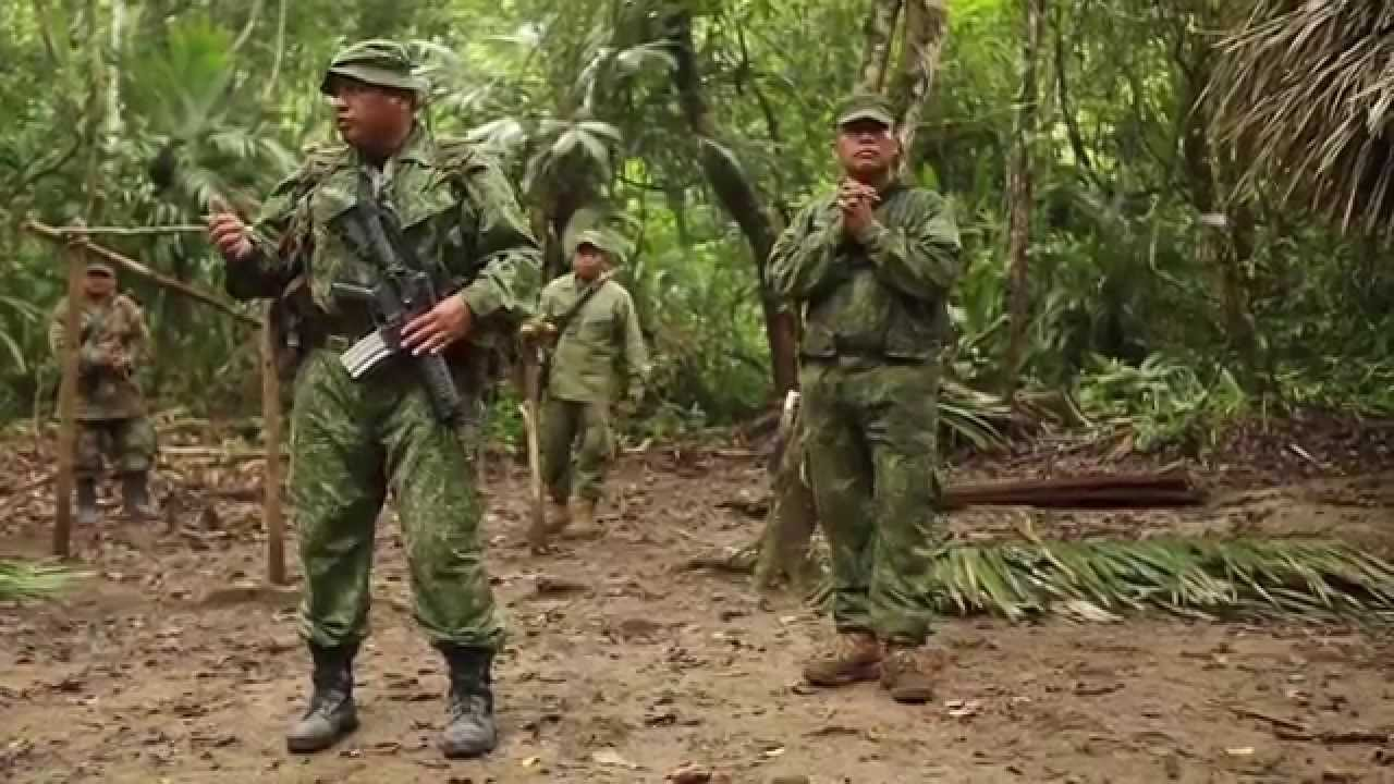 Military Jungle Warfare Training - US Marines In Belize ...