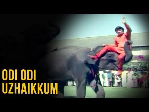 Odi Odi Full Song | Nalla Neram Movie Songs | நல்ல நேரம் | M.G.R | K.R. Vijaya | K. V. Mahadevan