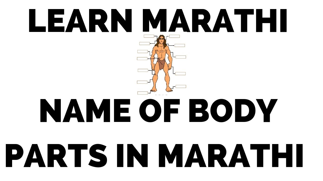 List of Body parts in Marathi