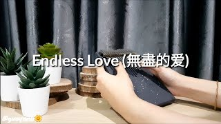 Download Mp3  Kalimba Cover  Endless Love  無盡的爱  - The Myth  神话