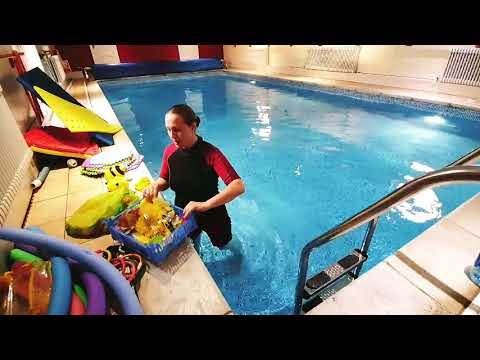 bees---aquatic-roleplay-series-(fun-progressive-swimming-lessons-that-really-work)