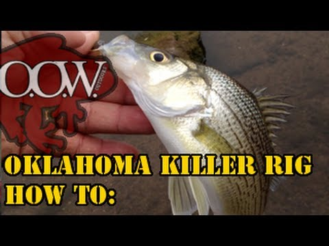 Best Fishing Rig Ever | Oklahoma Killer Rig | Striper | White/Sand Bass - OOW Outdoors