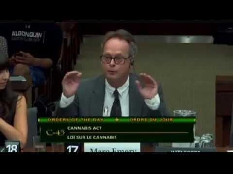 Marc Emery of Cannabis Culture VS Marilyn Gladu, Conservative MP