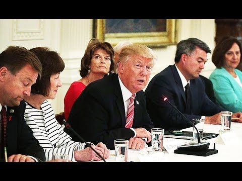 Thumbnail: Meeting Gets Awkward When Trump Knows NOTHING About Trumpcare