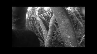 石垣島 防空壕探検