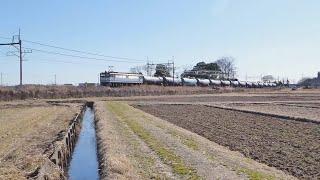 【EF65】東北線貨物列車  東大宮-蓮田  (62)【EF210】