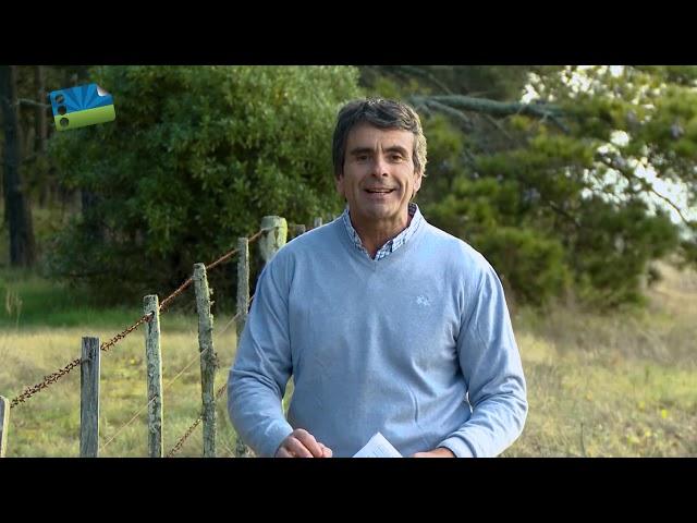 Agenda Agraria. Programa 11 de Julio