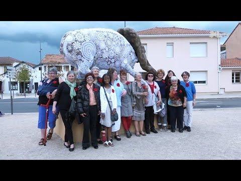 Le tricot se fait urbain à Mont-de-Marsan