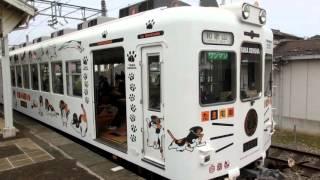 2015 10 10 たま列車